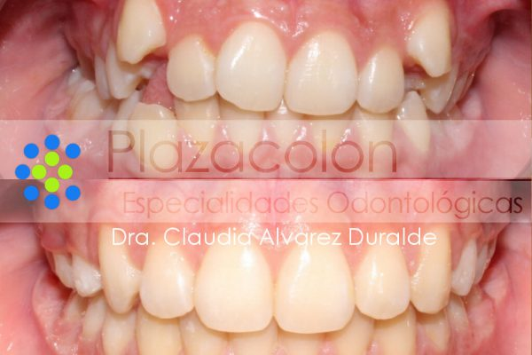 Dra. Claudia Alvarez Duralde